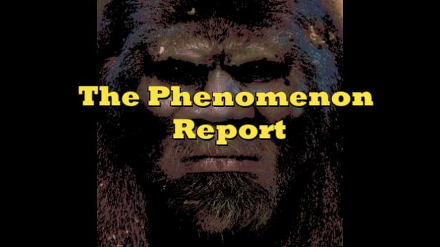 The Phenomenon Report